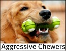 Best dog toys for Best plush dog toys for aggressive chewers