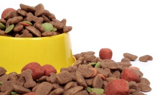overflowing bowl of dog food