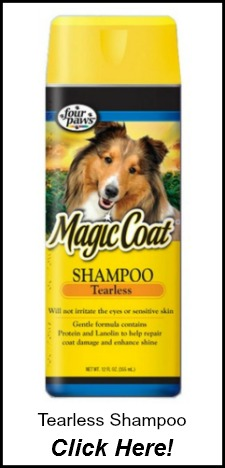 Magic Coat Tearless Dog Shampoo