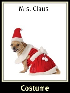 Mrs Claus Dog Costume