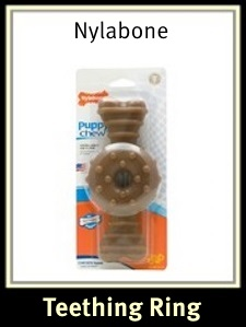 Nylabone Puppy Teething Ring Chicken