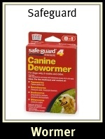 Tapeworms In Dogs Tapeworm Treatment