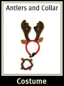 Dog Christmas Antlers and Collar Set