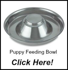 Flying Saucer Puppy Dish