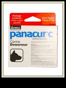 Panacur Canine Dewormer